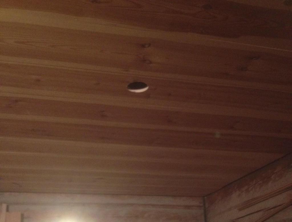 råtthål i taket